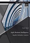 Agile Business Intelligence. Begriffe, Methoden, Analysen